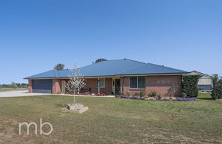 Picture of 36 Rosella Place, Orange NSW 2800