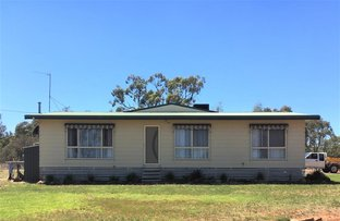 Picture of 438 Forest Hut Estate Merungle Hil Rd, Leeton NSW 2705