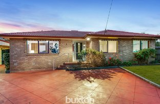 Picture of 3 Rivoli Court, Dingley Village VIC 3172