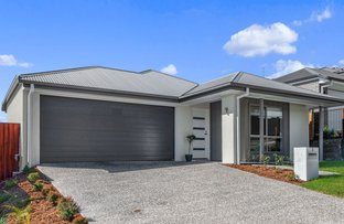 Picture of 5 Palmerston Close, Upper Kedron QLD 4055