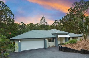 Picture of 5 Springbook Court, Cashmere QLD 4500