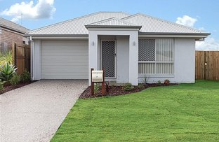 Picture of 29 Maestro Street, Griffin QLD 4503