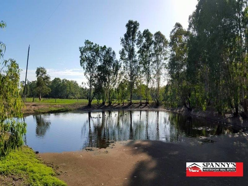 369 Kurkowski Road, Proserpine QLD 4800, Image 0