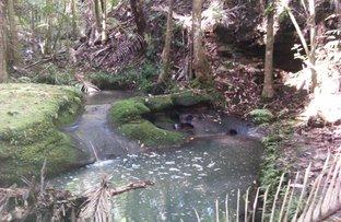 Picture of 114 Wild Road, Crohamhurst QLD 4519