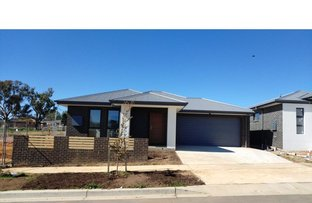 Picture of 88 Tredwell Street, Strathnairn ACT 2615