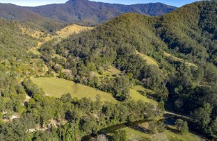 Picture of 4667 Taylors Arm Rd, Thumb Creek NSW 2447