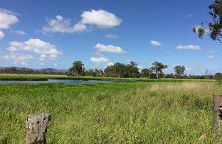Picture of 55799 Bruce Highway, Raglan QLD 4697