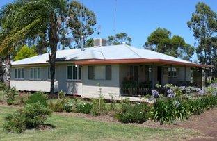 "Glenross"", Dulacca QLD 4425"