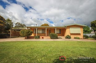 Picture of 71 King Street, The Rock NSW 2655