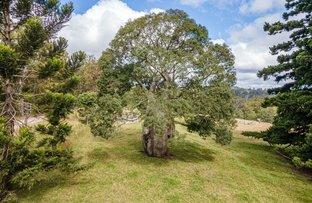 Picture of 581 Ravensbourne Dip Road, Ravensbourne QLD 4352
