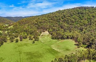 Picture of 111B Bunning Creek Road, Yarramalong NSW 2259
