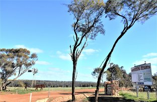 Picture of Hassell Road, Katanning WA 6317
