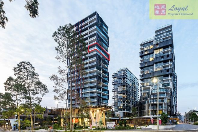 Picture of Level 16, 1608D/101 Waterloo Road, MACQUARIE PARK NSW 2113