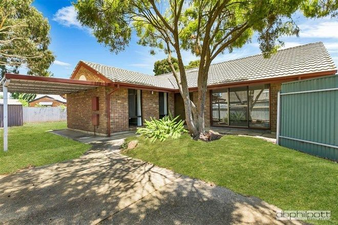 Picture of 27 Exeter Terrace, RENOWN PARK SA 5008