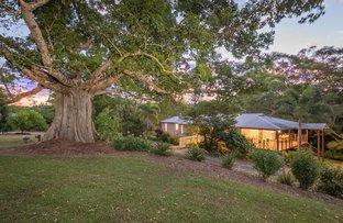 Picture of 455 Wahpunga Lane, Kin Kin QLD 4571