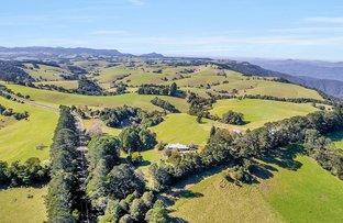 Picture of 5265 WATERFALL WAY, Dorrigo NSW 2453