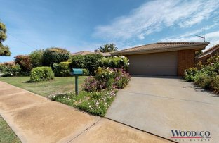 Picture of 41 Parkview Drive, Swan Hill VIC 3585
