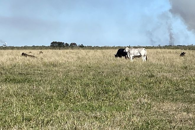 Picture of Lot 12 River Road..., FAIRYMEAD QLD 4670