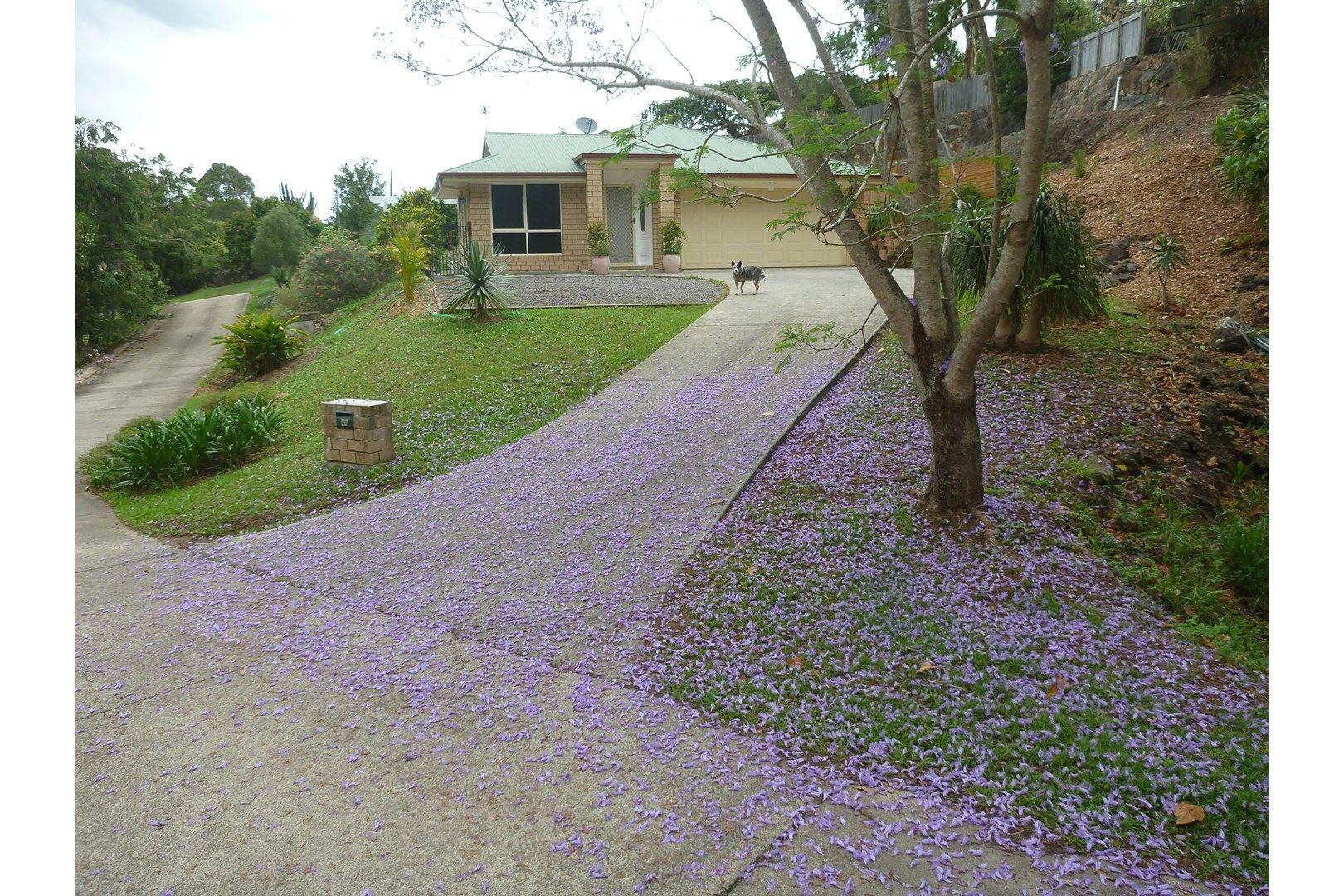 44 Lachlan Avenue, Nambour QLD 4560, Image 1