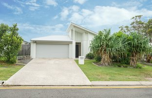 Picture of 7 Stringybark Place, Peregian Springs QLD 4573