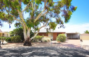 Picture of 7 Busbridge Court, Loxton SA 5333