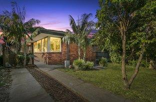 Picture of 33 Barton Avenue, Haberfield NSW 2045