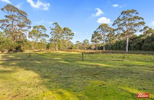 Picture of 0 Henty Road, Strahan TAS 7468