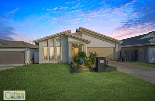 Picture of 18 Bottle Tree Crescent, Mango Hill QLD 4509