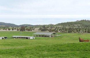 Yallambee,  Inlet Road, Tamworth NSW 2340