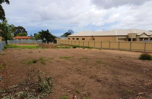 Picture of 80 & 80a Cashel Street, St Marys SA 5042