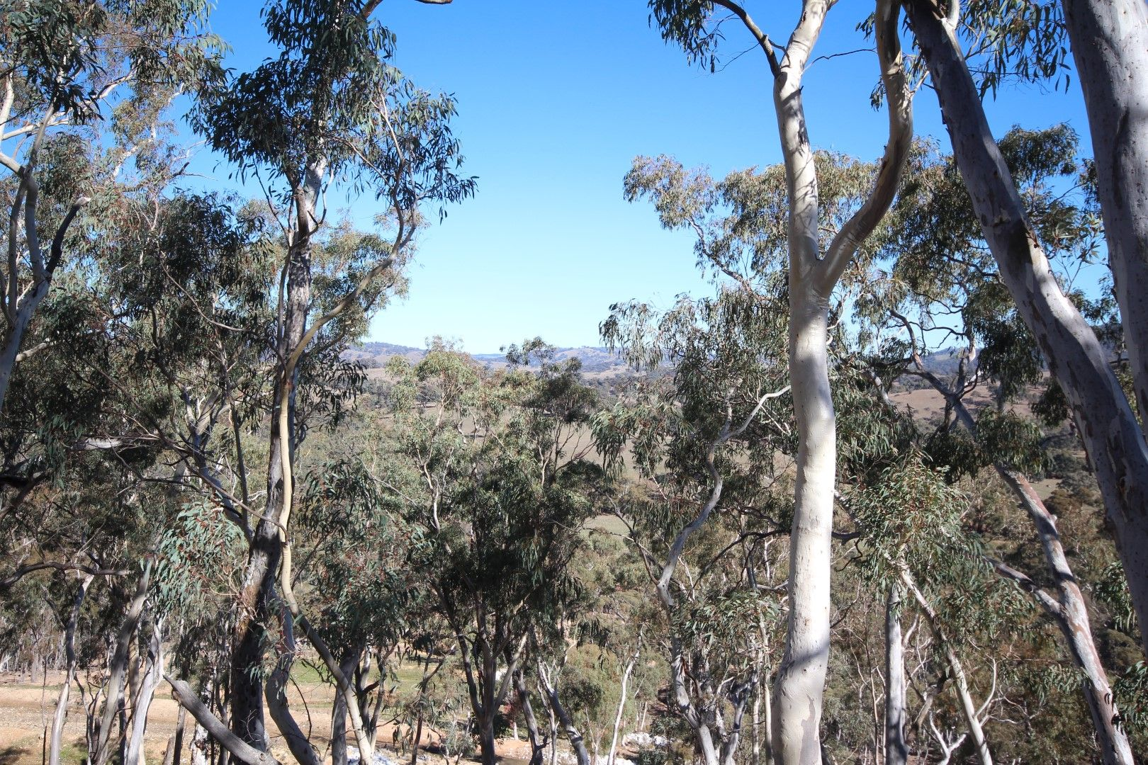 2902 Beaconsfield Road, Wisemans Creek NSW 2795, Image 2