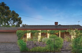 Picture of 16 Wildwood Avenue, Vermont South VIC 3133