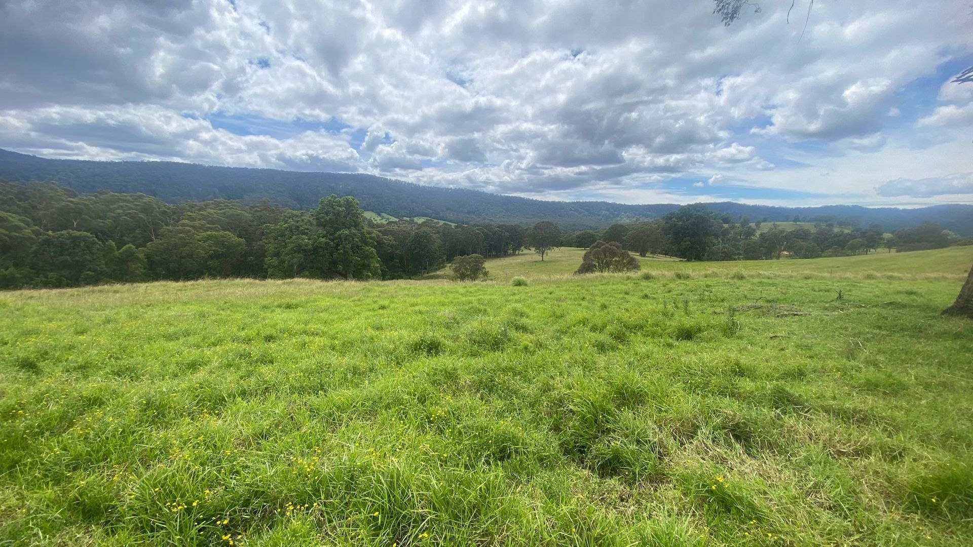 Lot C 1089 Greendale Road, Greendale NSW 2550, Image 1