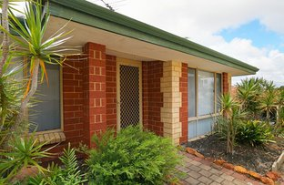 Picture of 44B Oats Street, East Victoria Park WA 6101