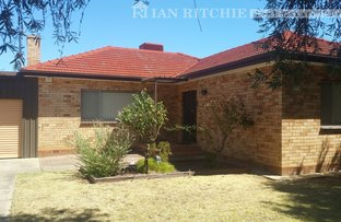 Picture of 149 Tamarind Street, North Albury NSW 2640
