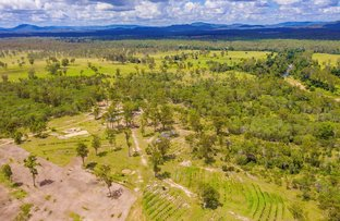 Picture of Lot 1488 Blowers Road, Munna Creek QLD 4570