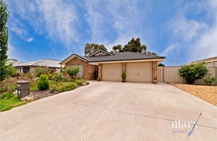 Picture of 16 Hoopmann Crescent, Nuriootpa SA 5355