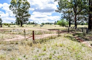 1351 Young Road, Grenfell NSW 2810