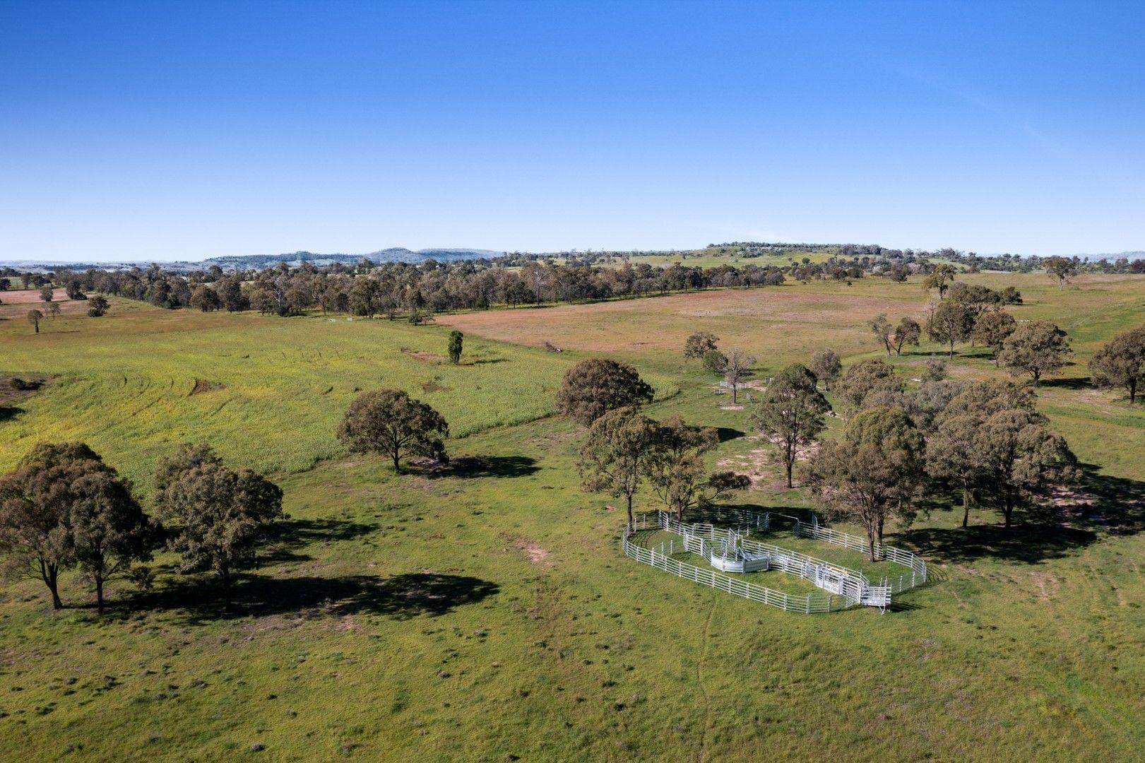 230 ACRES, SCRUB SOIL GRAZING, Peranga QLD 4352, Image 0