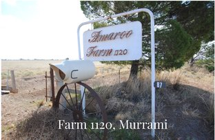 Picture of Farms 1722, 1120 & 1134a, Murrami NSW 2705