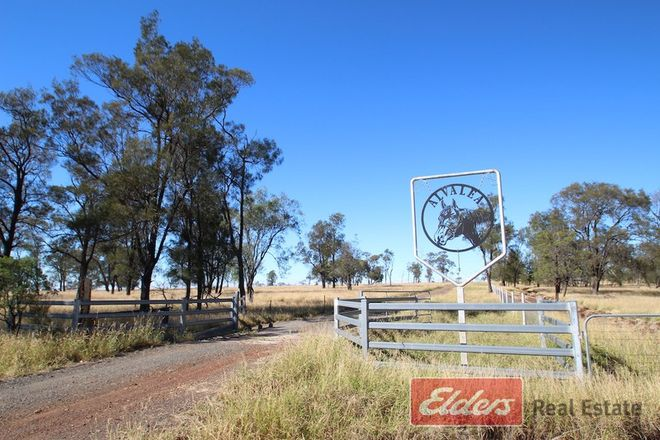 Picture of 47969 Warrego Highway, ROMA QLD 4455