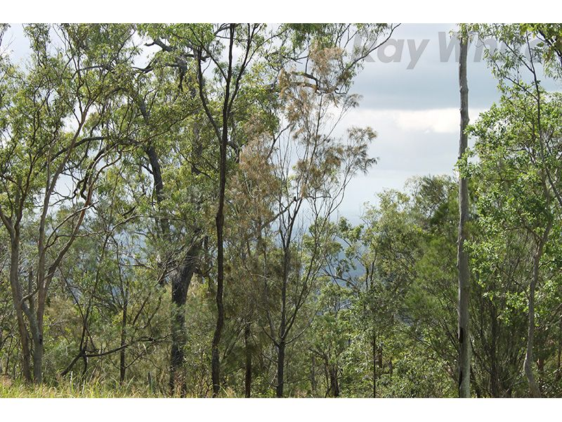 Ocean View QLD 4521, Image 2