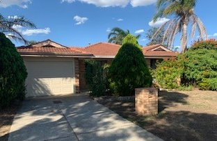 Picture of 26 Manapouri Meander, Joondalup WA 6027
