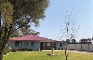 Picture of 164 York Street, Forbes NSW 2871