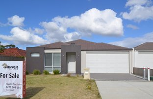Picture of 14a GRANT PLACE, Bentley WA 6102