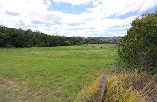 Picture of Lot 2, 1149 Jiggi Road, Jiggi NSW 2480