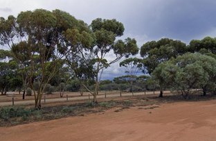 Picture of 0 Gimlet Way and Earl Drive, Mukinbudin WA 6479
