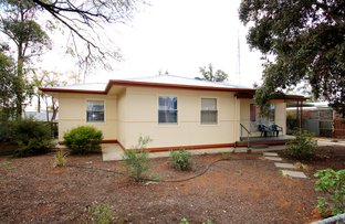 Picture of 1 Collins Street, Barmera SA 5345