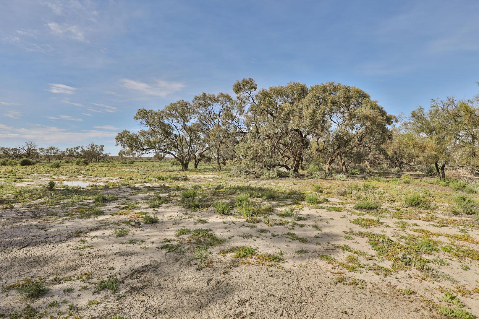 Part Lake Victoria - Rufus River Road via Wentworth, Rufus NSW 2648, Image 2