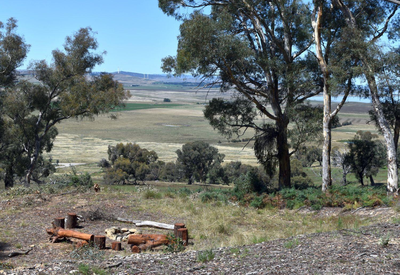 Phoenix Road, Currawang NSW 2580, Image 0